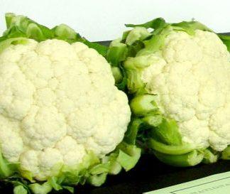 *NEW* Fairway Cauliflower F1