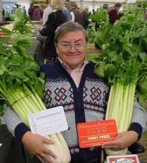 Evening Star Celery F1 (Exclusive to Medwyns) from an EARLY MARCH sowing.
