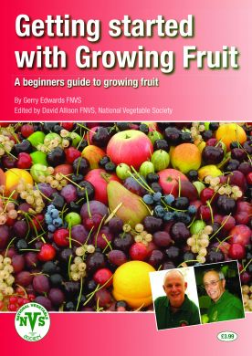Getting started with Fruit